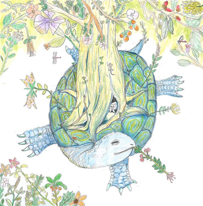"""""""Garden Turtle"""" 和名:庭亀(ニワガメ)"""