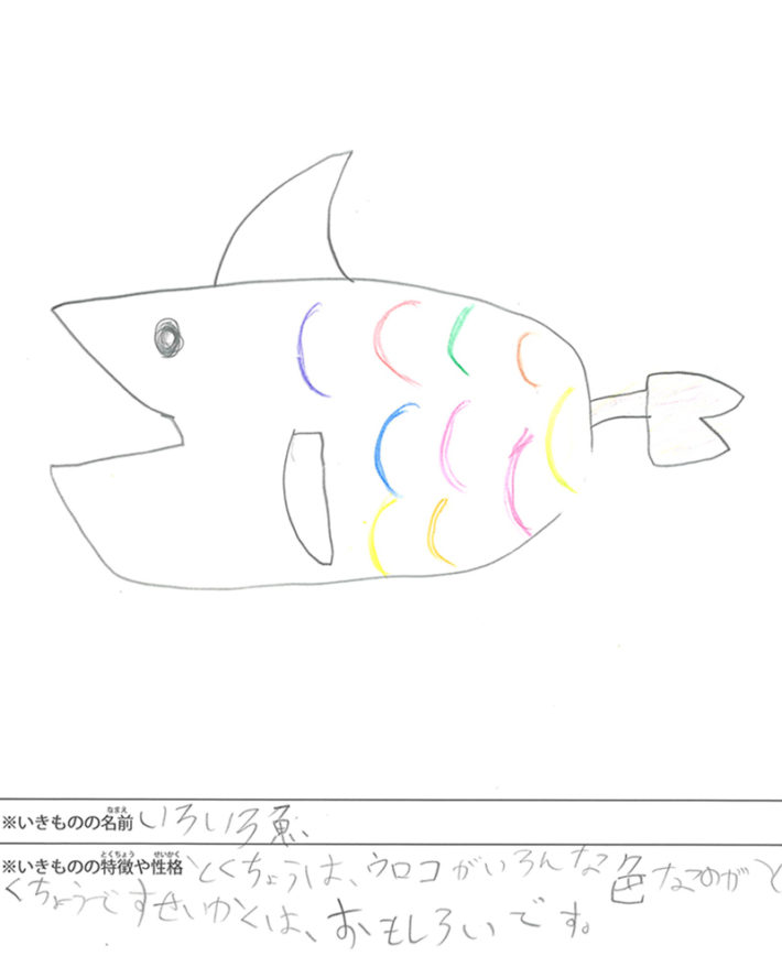 いろいろ魚