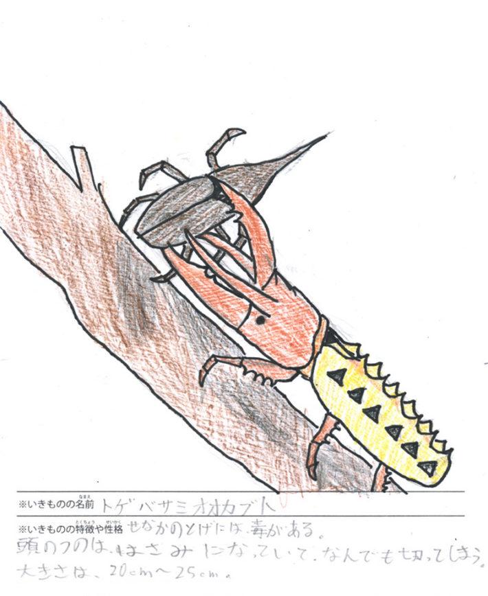 トゲバサミオオカブト